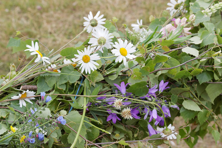maypole: Closeup of oxeye daisy and bluebell flowers on a traditional maypole