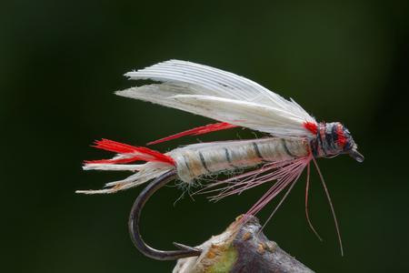 wet fly stock photos images, royalty free wet fly images and pictures, Fly Fishing Bait