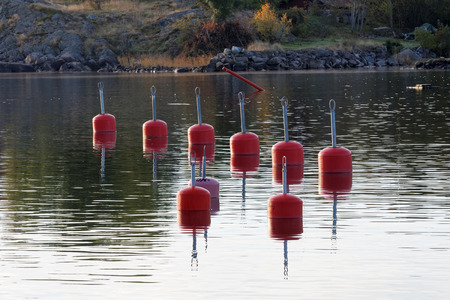 windless: Red buoys in the harbor reflecting in the water a perfect sunny, windless morning