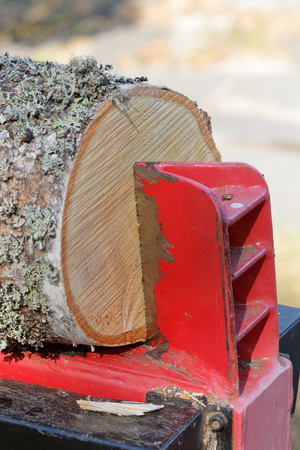 Closeup of a log splitter splitting a birch log