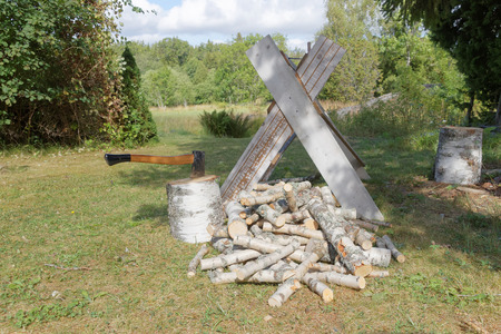 sawhorse: Sawhorse, axe, chopping blocks and chopped birch logs on the grass Stock Photo