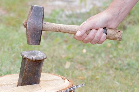 Hand holding a sledgehammer, hit a wedge to split a birch log