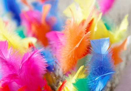 Colorful Easter twigs in pink, yellow and blue color Stock Photo