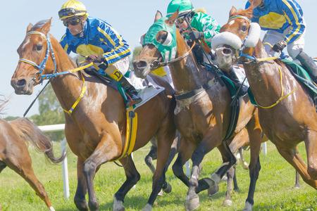 STOCKHOLM, SWEDEN - JUNE 06, 2017: Tough fight between jockeys riding gallop arabian race horses at Nationaldags Galoppen at Gardet. June 6, 2017 in Stockholm, Sweden