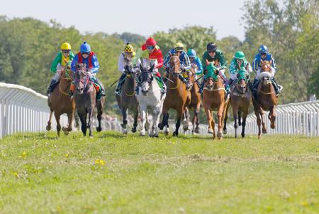 STOCKHOLM, SWEDEN - JUNE 06, 2017: Tough fight between colorful jockeys riding gallop arabian race horses at Nationaldags Galoppen at Gardet. June 6, 2017 in Stockholm, Sweden