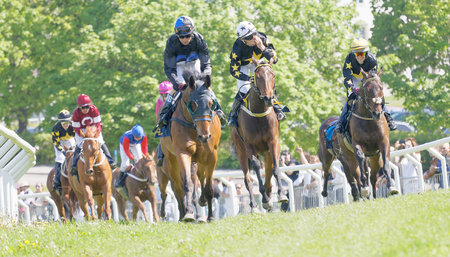 rival: STOCKHOLM, SWEDEN - JUNE 06, 2017: Smiling jockeys riding arabian race horses, trees in the background at Nationaldags Galoppen at Gardet. June 6, 2017 in Stockholm, Sweden