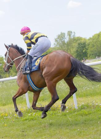 hippodrome: STOCKHOLM, SWEDEN - JUNE 06, 2017: Side rear view of a jockey riding a brown arabian race horse at Nationaldags Galoppen at Gardet. June 6, 2017 in Stockholm, Sweden Editorial