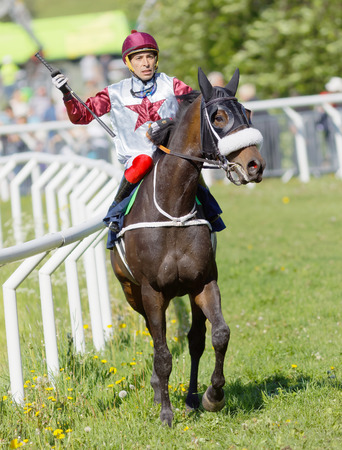 rival: STOCKHOLM, SWEDEN - JUNE 06, 2017: Colorful jockey holding a whip riding a brown gallop arabian race horse at Nationaldags Galoppen at Gardet. June 6, 2017 in Stockholm, Sweden
