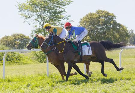 STOCKHOLM, SWEDEN - JUNE 06, 2017: Tough fight between two jockeys riding gallop arabian race horses at Nationaldags Galoppen at Gardet. June 6, 2017 in Stockholm, Sweden Editorial