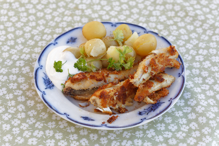 perca: Meal of fried perch fish, potato, parsley and sour cream on a plate