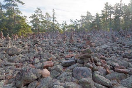 소나무 숲의 지역은 마을의 돌의 많은 신비한 더미로 덮여 섬 Aaland의 게타, 북유럽의 핀란드의 일부