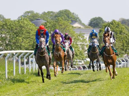 STOCKHOLM, SWEDEN - JUNE 06, 2019: Tough fight between many jockeys riding arabian race horses, trees in the background at ATG Nationaldags Galoppen at Gardet. June 6, 2019 in Stockholm, Sweden Editorial
