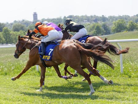 SZTOKHOLM, SZWECJA - 06 czerwca 2019: Widok z tyłu walki kolorowych dżokejów na galopujących koniach wyścigowych w Nationaldags Galoppen w Gardet. 6 czerwca 2017 w Sztokholmie, Szwecja