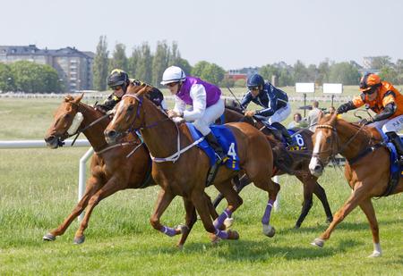STOCKHOLM, SWEDEN - JUNE 06, 2019: Side view of colorful jockeys riding arabian race horses at ATG Nationaldags Galoppen at Gardet. June 6, 2019 in Stockholm, Sweden