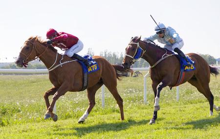 STOCKHOLM, SWEDEN - JUNE 06, 2019: Tough fight between jockeys riding arabian race horses on the race track at ATG Nationaldags Galoppen at Gardet. June 6, 2019 in Stockholm, Sweden