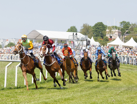STOCKHOLM, SWEDEN - JUNE 06, 2019: Tough fight between many jockeys riding arabian race horses and audience in the background at ATG Nationaldags Galoppen at Gardet. June 6, 2019 in Stockholm, Sweden