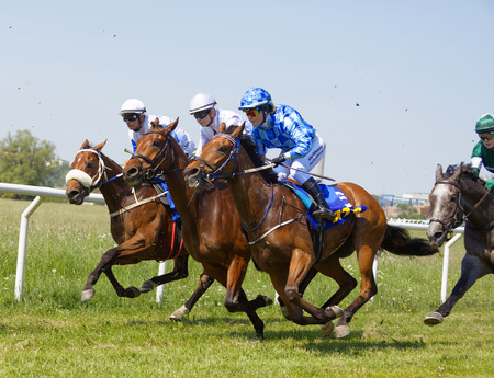 STOCKHOLM, SWEDEN - JUNE 06, 2019: Closeup of a chaotic scene with jockeys riding arabian race horses side by side at ATG Nationaldags Galoppen at Gardet. June 6, 2019 in Stockholm, Sweden