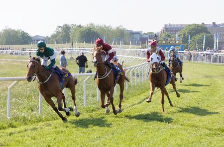 STOCKHOLM, SWEDEN - JUNE 06, 2019: Tough fight between many jockeys riding arabian race horses in a curve at ATG Nationaldags Galoppen at Gardet. June 6, 2019 in Stockholm, Sweden