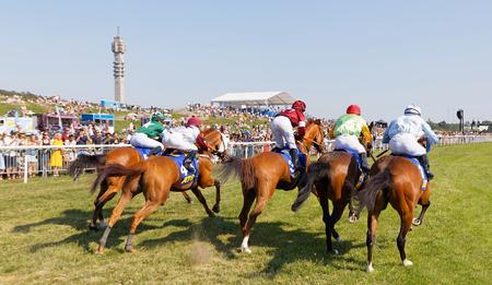 STOCKHOLM, SWEDEN - JUNE 06, 2019: Rear view of colorful jockeys on race horses just after the start at ATG Nationaldags Galoppen at Gardet. June 6, 2019 in Stockholm, Sweden