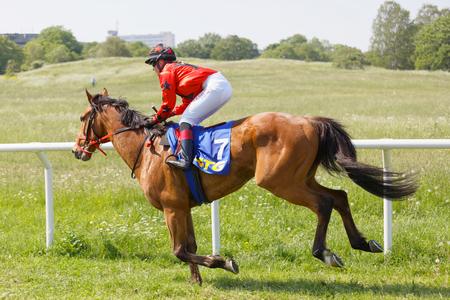STOCKHOLM, SWEDEN - JUNE 06, 2019: Side view of jockey Ulrika Holmquist riding an arabian gallop race horse at ATG Nationaldags Galoppen at Gardet. June 6, 2019 in Stockholm, Sweden