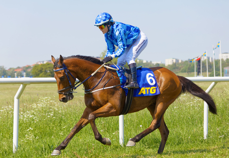 STOCKHOLM, SWEDEN - JUNE 06, 2019: Closeup of female jockey wearing blue clothes riding a gallop horse at ATG Nationaldags Galoppen at Gardet. June 6, 2019 in Stockholm, Sweden