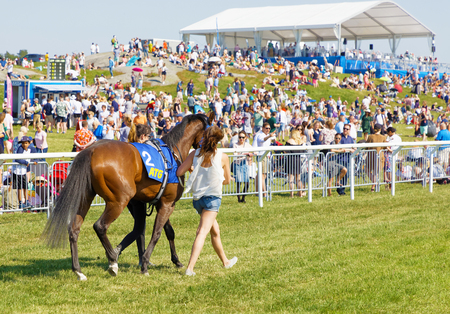 STOCKHOLM, SWEDEN - JUNE 06, 2019: Official leading the arabian race horse to the start, audience in the background at ATG Nationaldags Galoppen at Gardet. June 6, 2019 in Stockholm, Sweden 報道画像