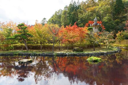 Beautiful Japanese pond. Red and green maple and pine trees reflecting in the water