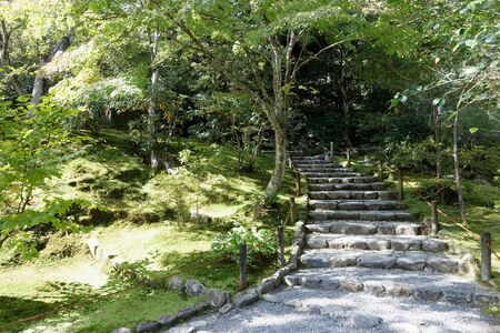 Stone stairway leading up to a beautiful park full of trees with green leafs and the ground covered with moss