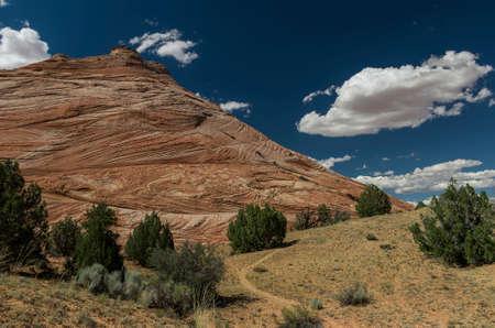 escalante: Escalante Canyon relief
