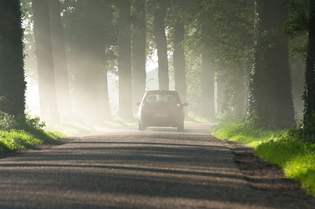 car disappearing in the morning mist photo