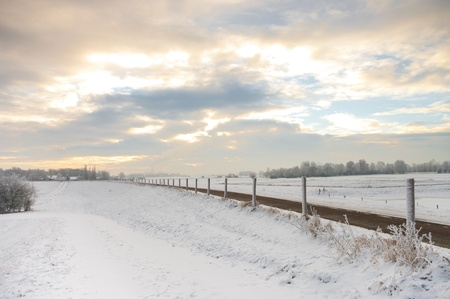 empty road in a typical Dutch winterlandscape photo