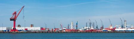 lots of cranes in rotterdam harbor photo