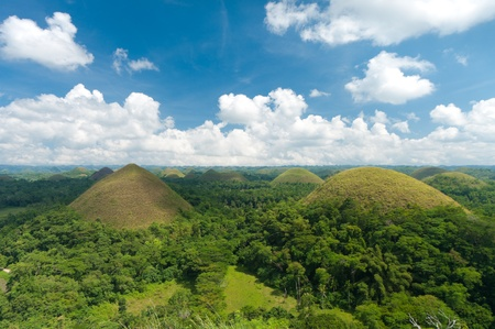 view over the famous chocolate hills on Bohol, Philippines. They are also featured in the provincial flag  photo