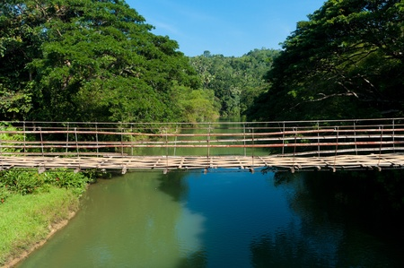 rope bridge: bridge over the Loboc river on Bohol, Philippines