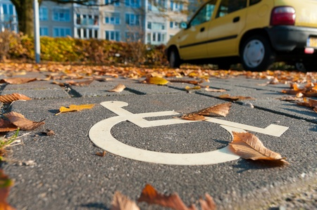 traffic signal: disabled parking permit sign painted on the street