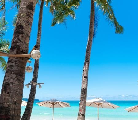 white parasols on a tropical beach photo