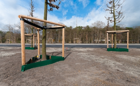 replenish: newly planted young trees supported by poles Stock Photo