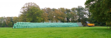 panoramic view of hay bales wrapped in green plastic Stock Photo - 17681590