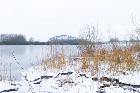frostbitten: frozen lake with reed in the foreground and a bridge in the background