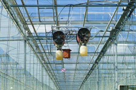 insecticidal: pest control in a commercial greenhouse