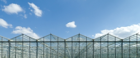 exterior of a commercial greenhouse in the Netherlands Reklamní fotografie