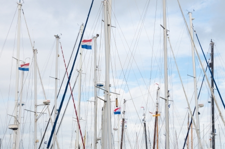 lelystad: masts with dutch flags in a yachting harbor in lelystad, netherlands