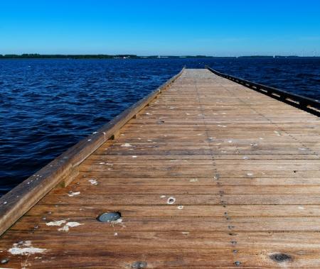 excreta: wooden jetty contaminated with birds excreta