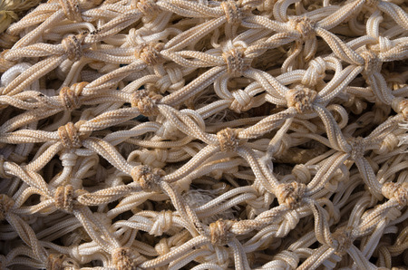 closeup of a fishing net on the quay of scheveningen harbor in the netherlands photo