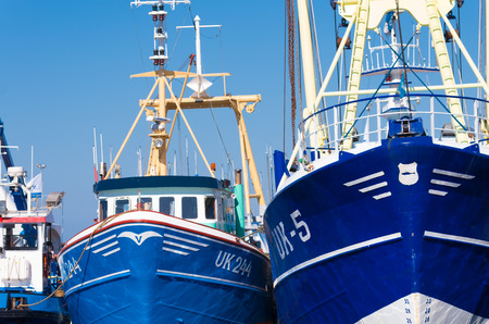 prow of some fishing boats in the harbor of Urk, Netherlands