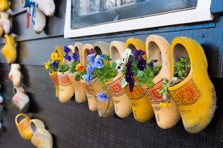 wooden shoes: traditional dutch wooden shoes hanging on a wall as decoration