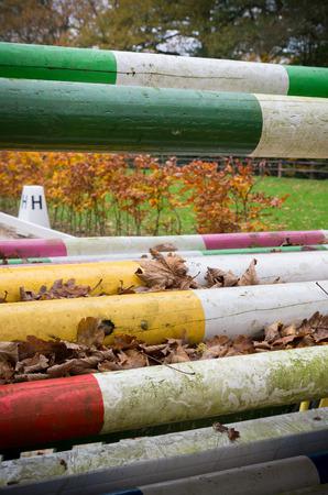 cavallo che salta: pali di legno colorate per cavallo che salta