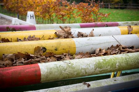 cavallo che salta: pali di legno colorati per cavallo che salta Archivio Fotografico