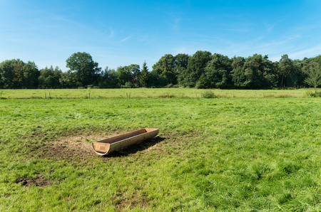trough: water trough in a green meadow in the netherlands
