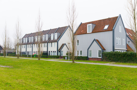 detached houses: row of semi detached houses in the netherlands